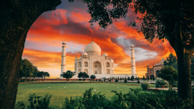 Photo of Choosing the Best Educational Tour Operators in India